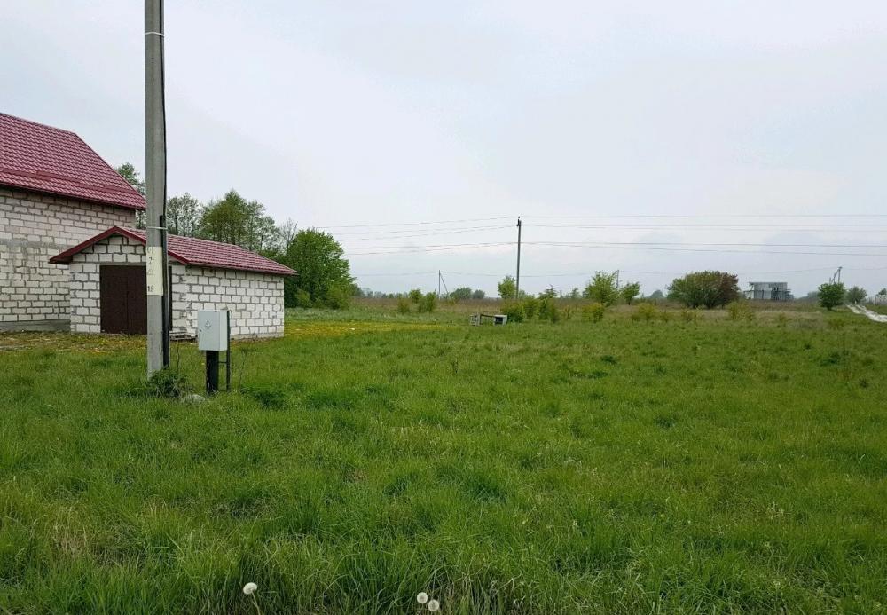 Купить земельный участок: п Ельники, обл Калининградская